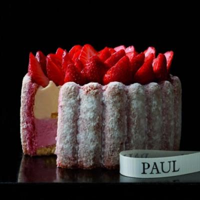 La charlotte vanille/fraises